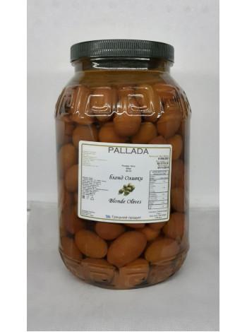 Зеленые оливки крупный размер БЛОНД 50-70 шт на кг, пэт
